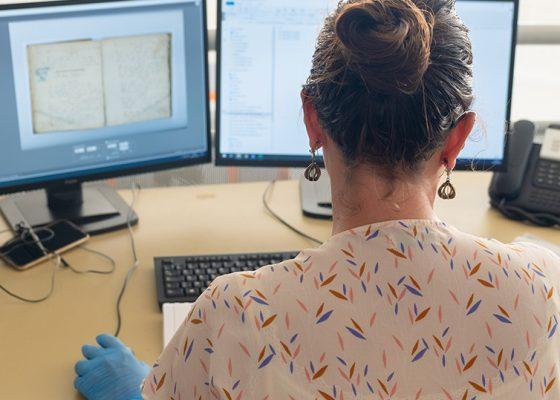 Professionnel de musée devant un ordinateur.